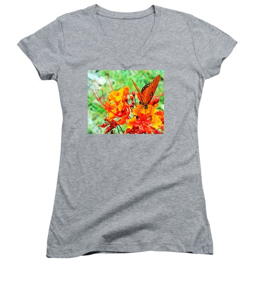 Gulf Fritillary Butterfly On Pride Of Barbados Women's V-Neck (Athletic Fit)