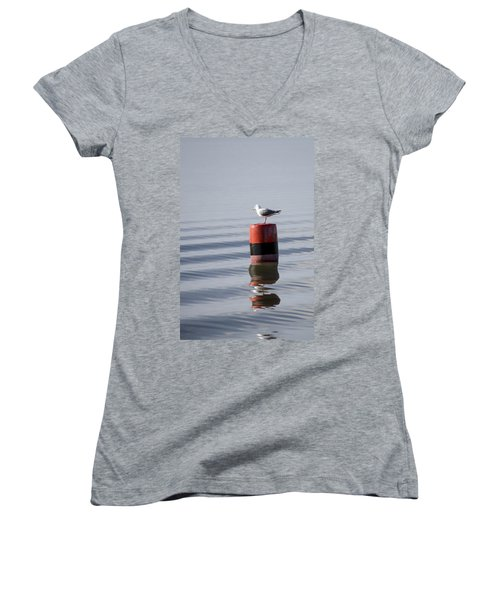 Gull Women's V-Neck T-Shirt