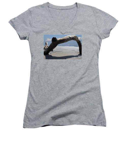 Gulls Away Women's V-Neck T-Shirt (Junior Cut) by Bob Hislop