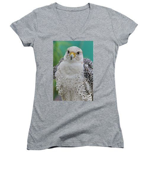 Gyrfalcon Women's V-Neck