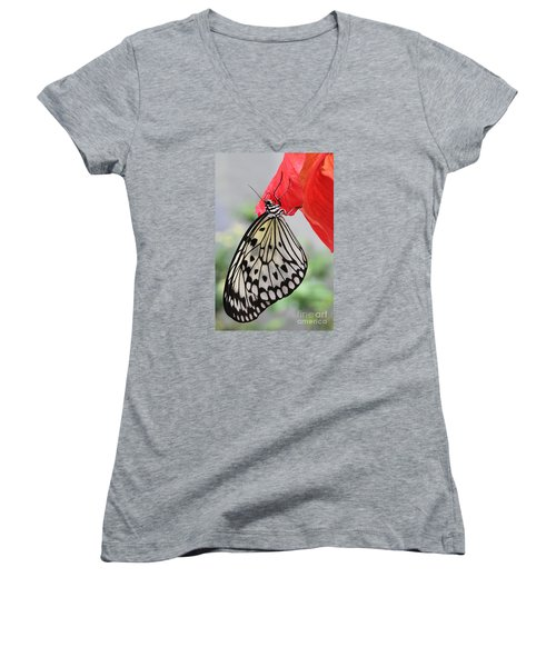 Women's V-Neck T-Shirt (Junior Cut) featuring the photograph Hanging On #2 by Judy Whitton