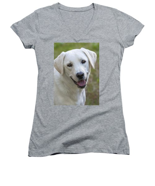 Women's V-Neck T-Shirt (Junior Cut) featuring the photograph Happy Lab by Stephen Anderson