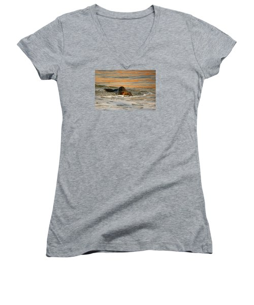 Women's V-Neck T-Shirt (Junior Cut) featuring the photograph La Jolla Seal Sunset by John F Tsumas
