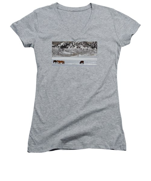 Harmony Women's V-Neck T-Shirt (Junior Cut) by Fiona Kennard
