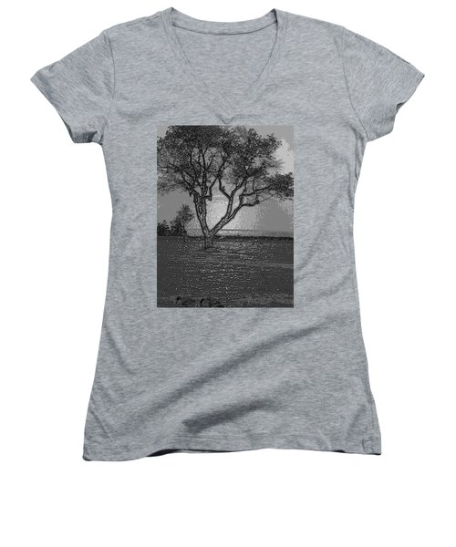 Haunting Women's V-Neck (Athletic Fit)