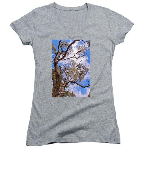 Hawaiian Sky Women's V-Neck T-Shirt