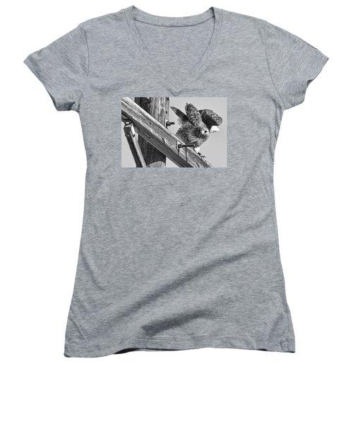 Hawk Eye Women's V-Neck T-Shirt