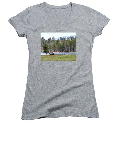 Hayden Valley Bison Women's V-Neck T-Shirt