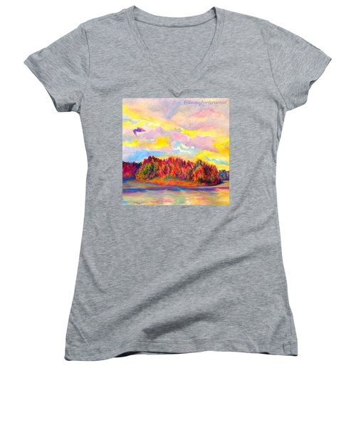 A Perfect Idea Of Freedom And Flight Women's V-Neck