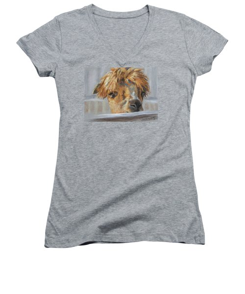 Women's V-Neck T-Shirt (Junior Cut) featuring the drawing Hello by Lori Brackett
