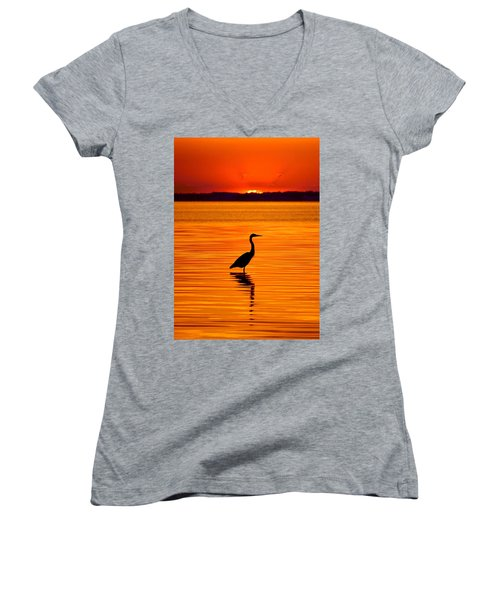Heron With Burnt Sienna Sunset Women's V-Neck (Athletic Fit)