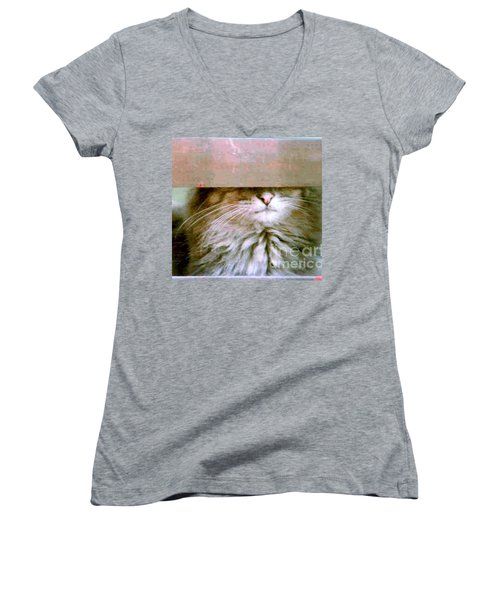 Women's V-Neck T-Shirt (Junior Cut) featuring the photograph Hey Diddle Diddle by Michael Hoard