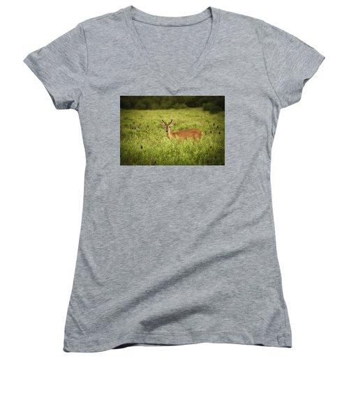 Hi Women's V-Neck T-Shirt