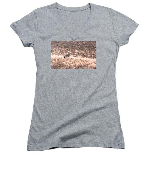 Hiding In Plain Sight Women's V-Neck T-Shirt