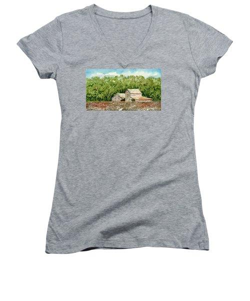 High Cotton Women's V-Neck T-Shirt