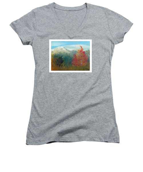 High Country View Women's V-Neck T-Shirt (Junior Cut) by C Sitton