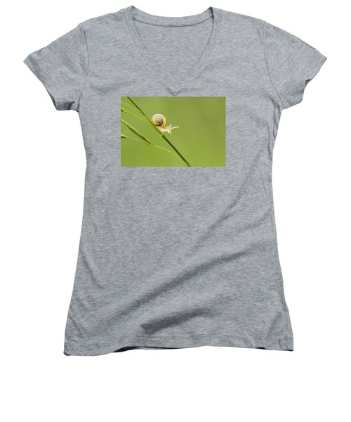 High Speed Snail Women's V-Neck T-Shirt (Junior Cut) by Mircea Costina Photography