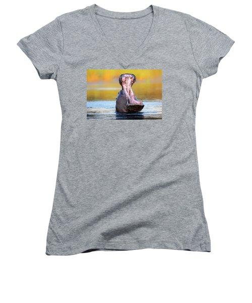 Hippopotamus Displaying Aggressive Behavior Women's V-Neck T-Shirt