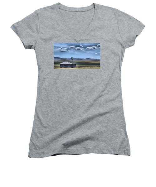 Homestead Women's V-Neck T-Shirt