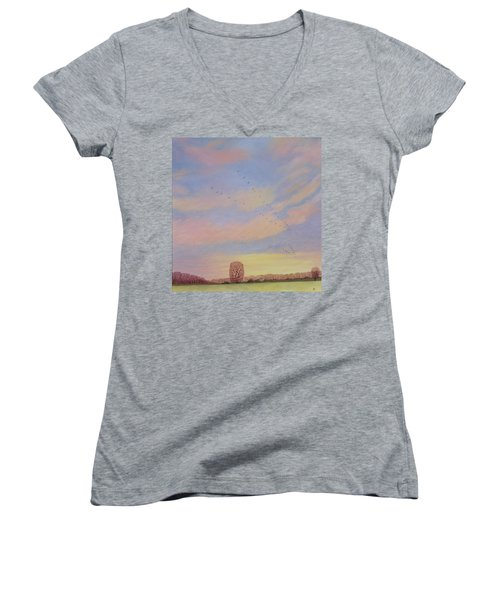 Homeward Women's V-Neck T-Shirt (Junior Cut) by Ann Brian