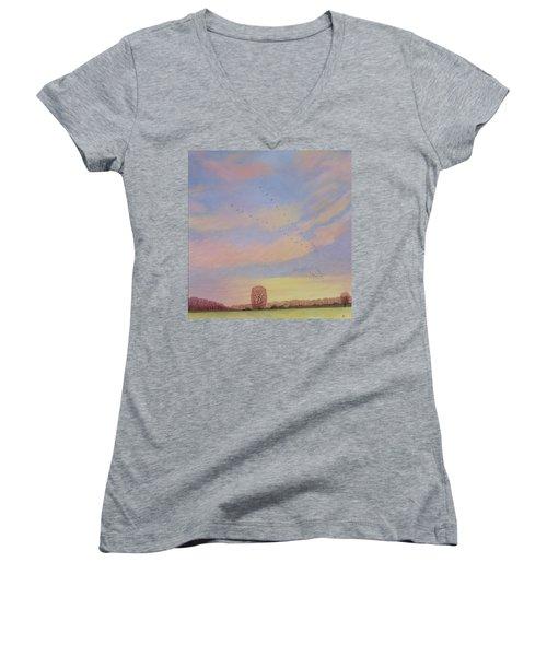 Homeward Women's V-Neck T-Shirt (Junior Cut) by Ann Brian