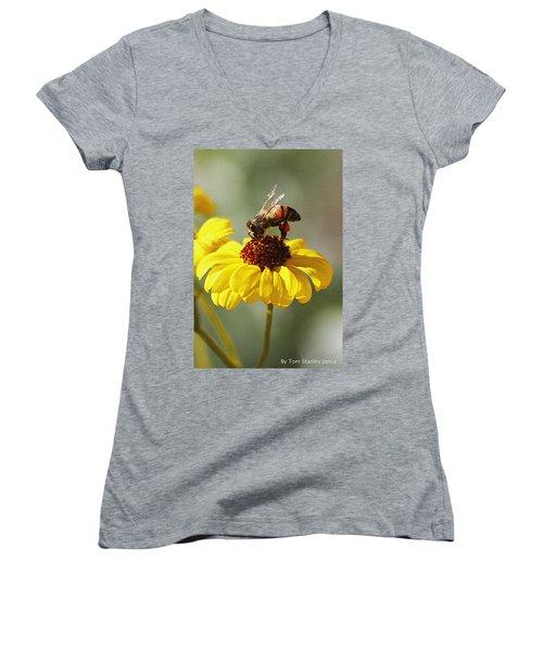 Honey Bee And Brittle Bush Flower Women's V-Neck T-Shirt