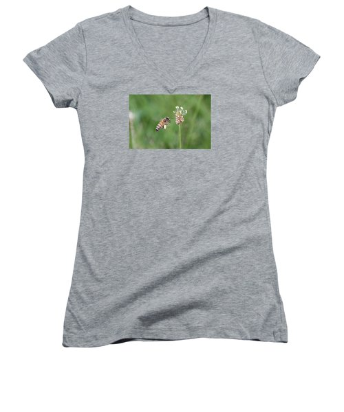 Honeybee And English Plantain Women's V-Neck T-Shirt (Junior Cut) by Lucinda VanVleck
