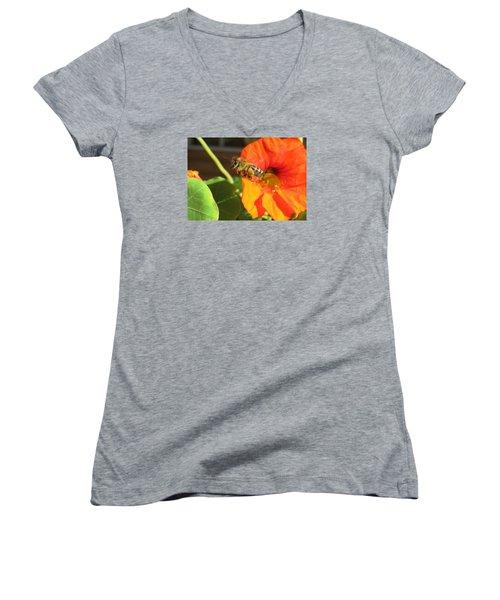 Honeybee Leaving Nasturtium With A Full Pollen Basket Women's V-Neck T-Shirt (Junior Cut) by Lucinda VanVleck