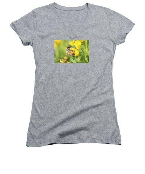 honeybee on Birdsfool Trefoil Women's V-Neck T-Shirt (Junior Cut) by Lucinda VanVleck