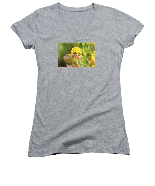 Honeybee On Hop Clover Women's V-Neck T-Shirt (Junior Cut) by Lucinda VanVleck