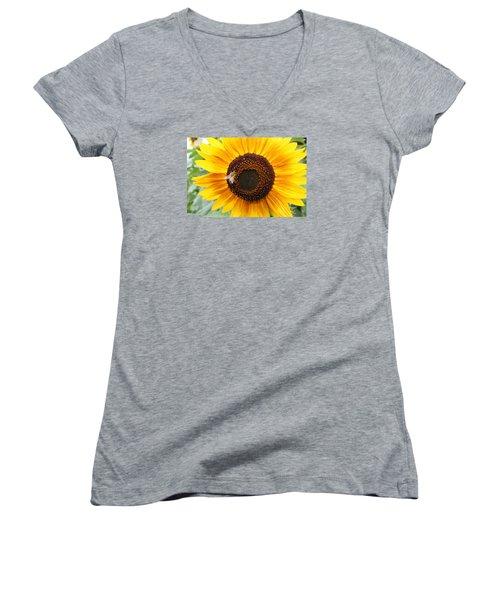 Honeybee On Small Sunflower Women's V-Neck T-Shirt (Junior Cut) by Lucinda VanVleck