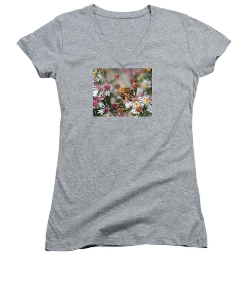 Honeybee Sipping Nectar On Wild Aster Women's V-Neck T-Shirt (Junior Cut) by Lucinda VanVleck