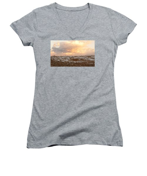 Hope For The Desolate Women's V-Neck (Athletic Fit)