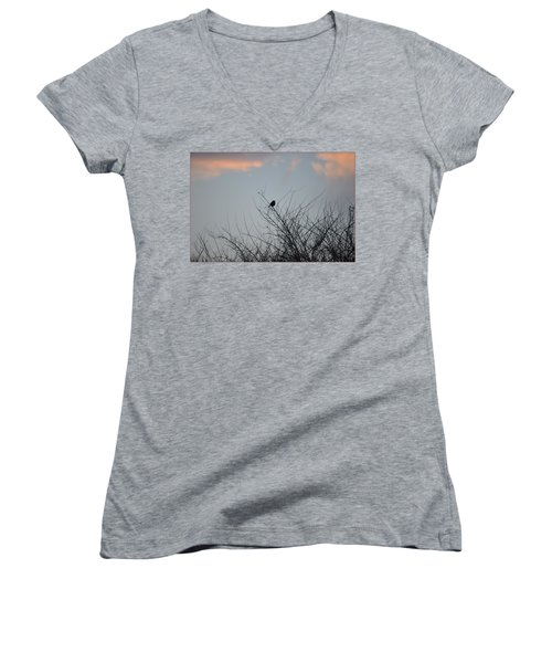 Hope Perched  Atop Women's V-Neck (Athletic Fit)