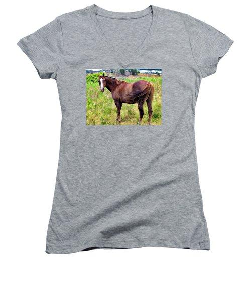 Women's V-Neck T-Shirt (Junior Cut) featuring the photograph Horse 5 by Dawn Eshelman
