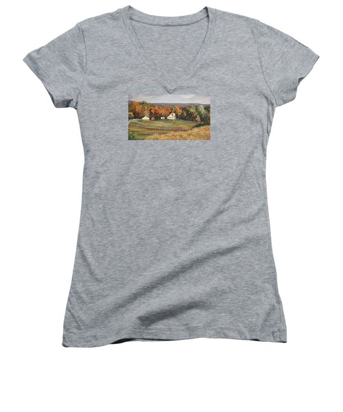 Horse Farm Women's V-Neck T-Shirt (Junior Cut) by Alan Mager
