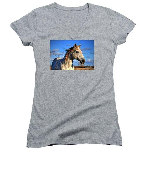 Horse Women's V-Neck T-Shirt (Junior Cut) by Savannah Gibbs