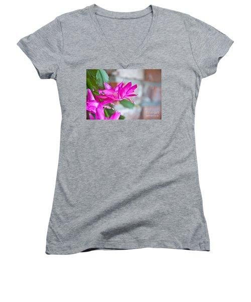 Hot Pink Christmas Cactus Flower Art Prints Women's V-Neck T-Shirt (Junior Cut) by Valerie Garner