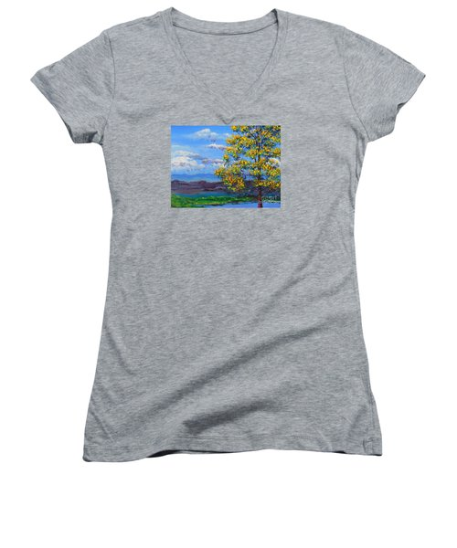 How Lovely Is Your Dwelling Place Women's V-Neck T-Shirt (Junior Cut) by Dan Whittemore