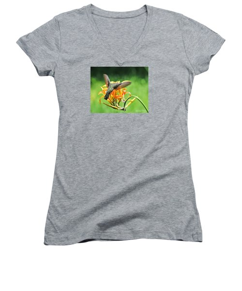 Hummingbird At Lunchtime Women's V-Neck T-Shirt (Junior Cut) by David Perry Lawrence