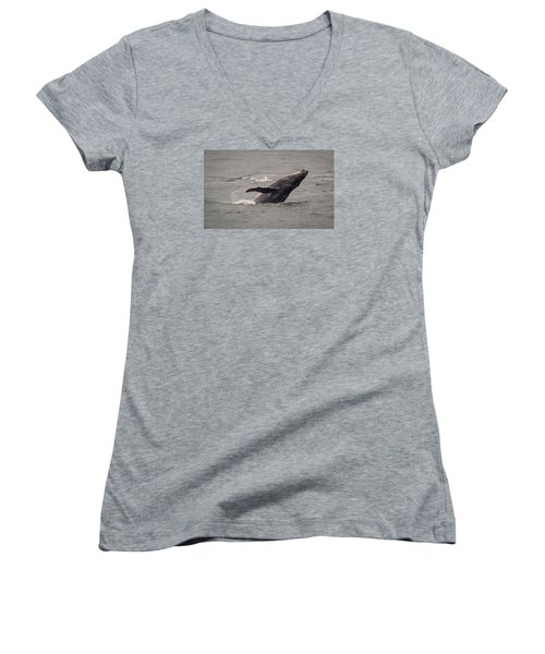 Humpback Whale Breaching Women's V-Neck T-Shirt (Junior Cut) by Janis Knight