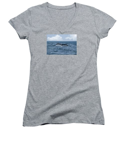 Humpback Whale Fin Women's V-Neck T-Shirt (Junior Cut) by Juli Scalzi