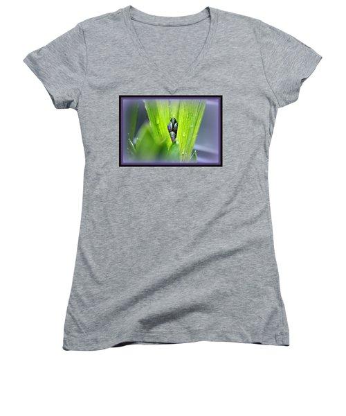 Hyacinth For Micah Women's V-Neck T-Shirt