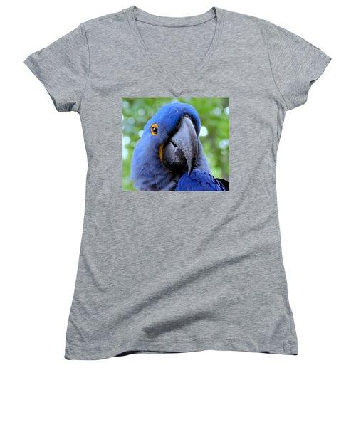 Hyacynthia Women's V-Neck T-Shirt