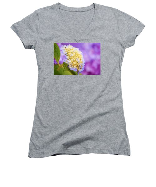 Hydrangea On Purple Women's V-Neck T-Shirt (Junior Cut) by Parker Cunningham