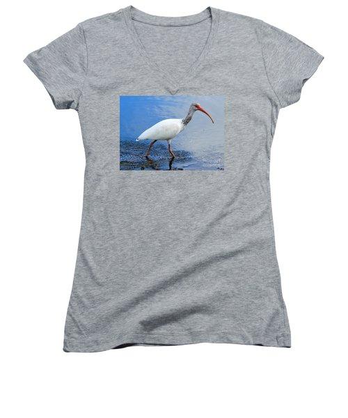 Ibis Visitor Women's V-Neck T-Shirt (Junior Cut) by Carol Groenen