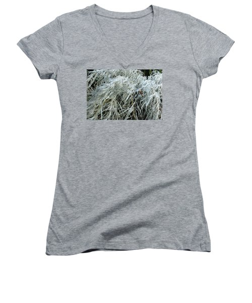 Ice On Bamboo Leaves Women's V-Neck (Athletic Fit)