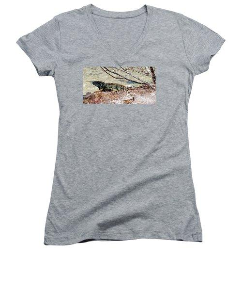 Women's V-Neck T-Shirt (Junior Cut) featuring the photograph Iguana Iguana by Amar Sheow
