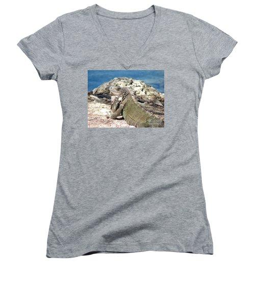 Iguana In The Sun Women's V-Neck T-Shirt