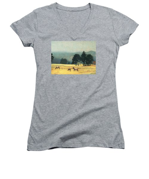 Impression Evergreen Colorado Women's V-Neck